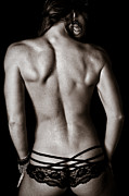 Rear Posters - Art of a Womans Back Muscles  Poster by Jt PhotoDesign