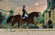 Fran J Scott Metal Prints - Art of Dressage Metal Print by Fran J Scott