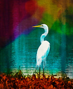Frank Bright - Art of the Egret