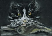 Cute Cat Pastels Prints - Arthur  Print by Teresa White