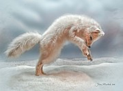 \\\\joan Minchak\\\\ Framed Prints - Artic White Wolf Framed Print by Joan  Minchak