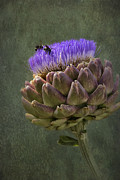 Blooming Digital Art - Artichoke Bloom and Bee Dip by Belinda Greb