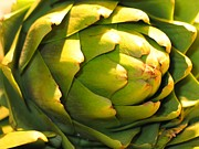 Jennifer Wheatley Wolf - Artichoke