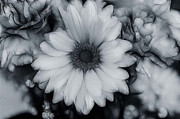Artistic Black And White Flowers Print by Carol Sawyer