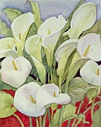 Yellow Leaves Painting Posters - Arum Lillies Poster by Llian Delevoryas