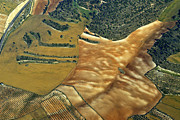 Aerial Photo Posters - As An Animal Skin Poster by Guido Montanes Castillo