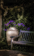 Outdoor Garden Prints - As Evening Falls Print by Julie Palencia