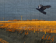 Judy Wood Digital Art Posters - As the Crow Flies-fall fields Poster by Judy Wood