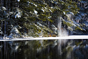 Karol  Livote - As The Snow Falls