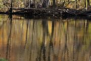 Linda Knorr Shafer - As Through A Leafless Landscape Flows A River