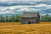 Barn Storm Art - As Time Goes By by Sandra Bronstein