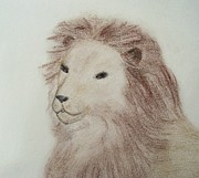 Photography Pastels Prints - Aslan of Narnia Print by Christine Corretti