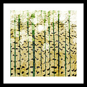 Bark Design Prints - Aspen Colorado Abstract Square 3 Print by Andee Photography