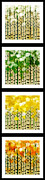 All - Aspen Colorado Abstract Vertical 4 In 1 Collection by Andee Photography