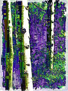 Aspen Prints - Aspen Grove 3 Print by Tim Allen