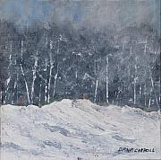 Dana Carroll - Aspen Ridge Blizzard
