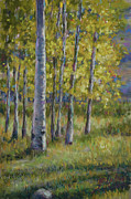 Aspen Trees Pastels Prints - Aspen Shadows Print by Billie Colson