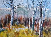 Wisconsin Landscape  Painting Originals - Aspen Thicket by Kris Parins