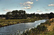 Landscape Greeting Cards Posters - Assateague Island - A Nature Preserve Poster by Gerlinde Keating - Keating Associates Inc