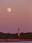 Lighthouse Wall Decor Framed Prints - Assateague Lighthouse Framed Print by Skip Willits