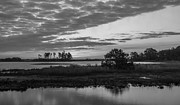 Dusk Art - Assateague Salt Marsh BW by Photographic Arts And Design Studio