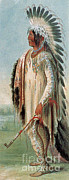 Feathered Photos - Assiniboine Warrior 1831 by Photo Researchers