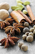Round Photo Prints - Assorted spices Print by Elena Elisseeva