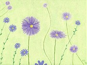 Aster Paintings - Asters by Elizabeth Sullivan