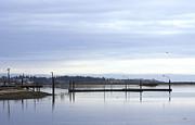 Marilyn Wilson - At Esquimalt Lagoon