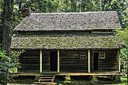 Log Cabin Art Photos - At Home in the Woods by Barry Jones