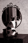 Laura Melis - At the mirror