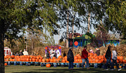 Kkphoto1 Prints - At The Pumpkin Farm Print by Kay Novy