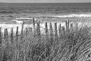 Ocean Front Photos - At The Sea 2 by Sophie De Roumanie