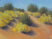 Santa Fe Pastels Originals - Atalya Trail by Mary Olivera