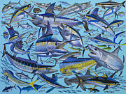 Rainbow Fish Paintings - Atlantic Gamefish Off008 by Carey Chen