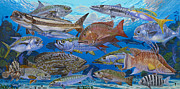 Nassau Grouper Prints - Atlantic Inshore Species In0013 Print by Carey Chen