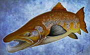 Salmon Drawings Posters - Atlantic Salmon Poster by Nick Laferriere