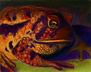 Amphibians Pastels Framed Prints - Atoadment Framed Print by D Renee Wilson