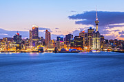 Lit Metal Prints - Auckland Skyline Metal Print by Colin and Linda McKie