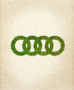 Audi Grass Logo Print by Aged Pixel