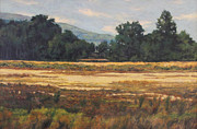 Gregory Arnett Painting Framed Prints - August Meadow Framed Print by Gregory Arnett
