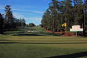 Augusta Golf Photos Art - Augusta National 10 Camellia Masters Photo 1 by Phil Reich