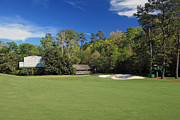 Augusta Golf Photos Art - Augusta National 11 White Dogwood Masters Photo 3 by Phil Reich