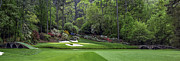Golf Photos Posters - Augusta National Golf Club Hole 12 Golden Bell Panoramic 3 Poster by Phil Reich