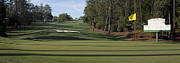 Golf Photos Framed Prints - Augusta National Hole 10 Camellia Masters Panorama Photo 2 Framed Print by Phil Reich