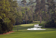 Golf Photos Framed Prints - Augusta National Hole 10 Camellia Masters Photo 5 Framed Print by Phil Reich