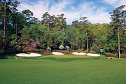 Amen Corner Photos Posters - Augusta National Hole 13 Azalea Masters Photo 3 Poster by Phil Reich