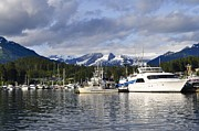 Cathy Mahnke - Auke Bay Harbor