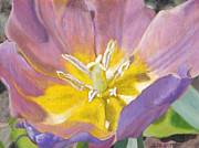 Purple Tulip Paintings - Aurora by Jennifer Frampton