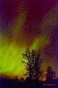 Good Luck Mixed Media Metal Prints - Aurora Northern Lights Metal Print by Alex Khomoutov